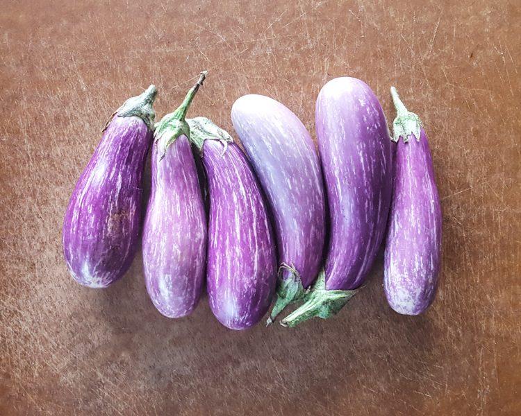 Thymeline 24 | Feast In Thyme